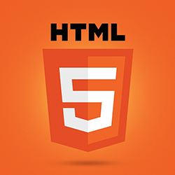 Website and Web Applications Development in Chennai